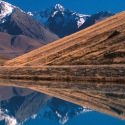 Interpretation of Internal Erosion Susceptibility in a New Zealand Canal Embankment